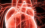 Recent Advances in Catheter Ablation of Atrial Fibrillation