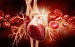 Riboflavin alleviates cardiac failure in Type I diabetic cardiomyopathy